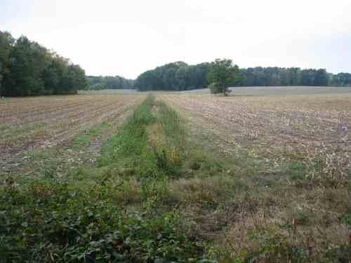 Schicksal eines Bachoberlaufs, in Niedersachsen fast an der Tagesordnung: verrohrt, kanalisiert, schutzlos bedrängt von Dünger und Pestizid. Und der Steuerzahler subventioniert . . .