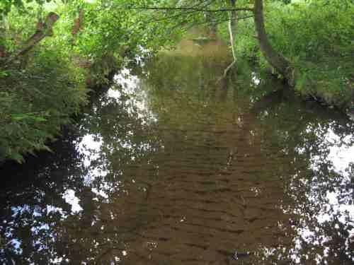 Was für den Laien wie ein Sandbach aussieht trügt - die Folge von erzeugter Überbreite und Bodeneinschwemmung.