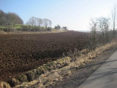 Wo sich die Landschaft öffnet - das bekannte Bild: Subventions-Agrarnutzung.