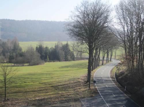 Mal ein anderer Aspekt - es gibt sie noch (sehr vereinzelt): Straßen-Mäander mit Altbaum-Allee.