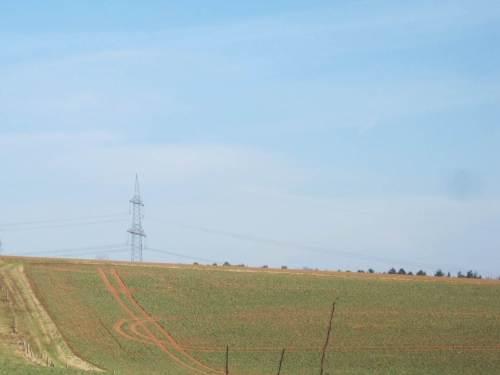 Agrar-Zeichen - keine Kreise im Kornfeld.