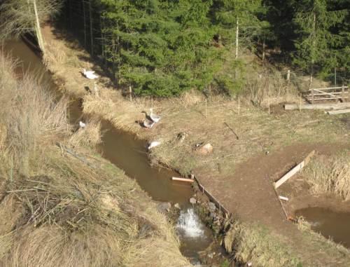 Blick aufwärts von der anderen Brückenseite: Ach so - Einstau, Ableitung in Teich, Gänsehaltung auf dem Wasser. Die Wasserbehörde wird sich freuen.