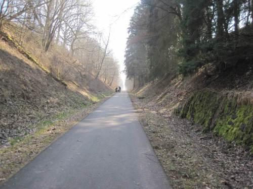 Neben Radfahrern, Joggern, Wanderern begegne ich auch Hundeführern. - Danke fürs Anleinen!