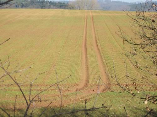 Agrar-Spuren. (Allzu) Schweres Gerät verdichtet den Boden Jahr für Jahr mehr. Probleme mit zu viel und zu wenig Regen verschärfen sich.