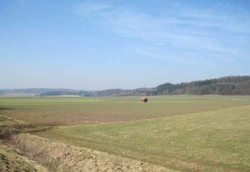 Auch hier war mal Landschaft, Biodiversität.