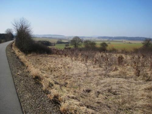 Nur am Bahndamm, neben dem jetzigen Radweg, wird Naturentwicklung zugelassen.