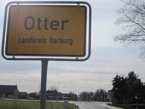 Otter-Kreisel voraus.