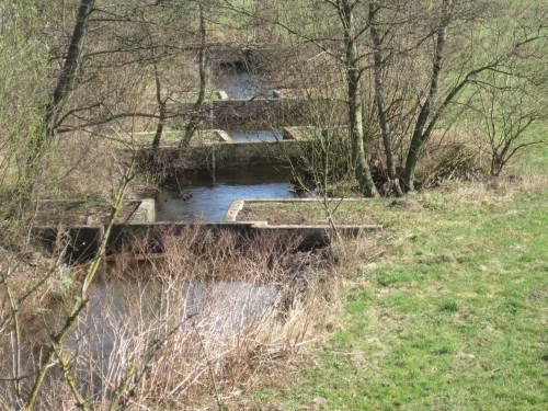 Blick von Oberstrom: Detail Gesamteindrucck des Fischpasses am rechten Seeveufer - ein eigen- und wohl einzigartiges Bauwerk der Vergangenheit.
