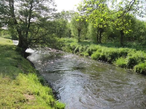 Ein Stück abwärts der Brücke fließt die Seeve weiter als attraktives Salmonidengewässer.