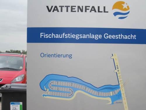 Am Nordufer der Elbe trafen wir dann auf die anderen und studierten die Übersichtstafel.