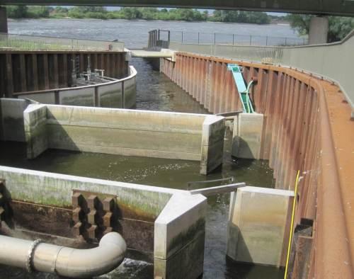 Richtung Auslauf zur Elbe verengt ist der Fischpass auf ca. 1/3 seiner Breite. So wird eine hinreichende Strömung erzeugt, durch die aufstiegswillige Fische den Eingang finden.