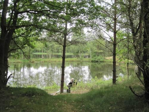 Mitten im Grünen, an zwei Seen, hatten sich die Interessierten zusammengefunden.