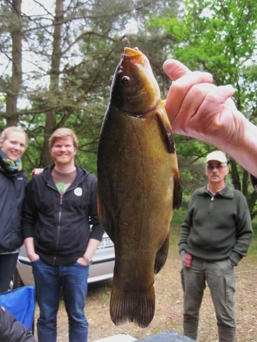Da freut sich die Familie auf die Fischmahlzeit.