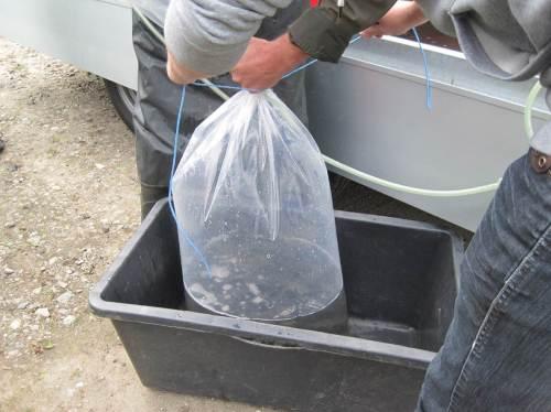 Wenig Wasser, viel Sauerstoff drüber - so ist das richtig für den Weitertransport (und nicht umgekehrt).