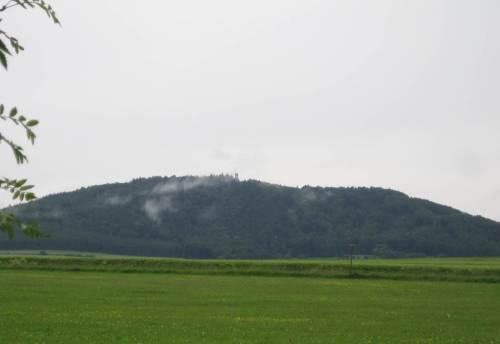 Zum Glück ist der gewitterartige Schauer bald vorbei. Feuchte Wärme, Sonne, Regen drauf - die Füchse kochen am Eisenberg.