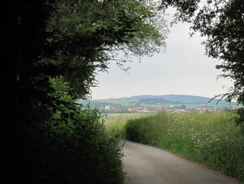 Tunnelblick auf Frankenau: die abendliche Wanderung geht zu Ende.