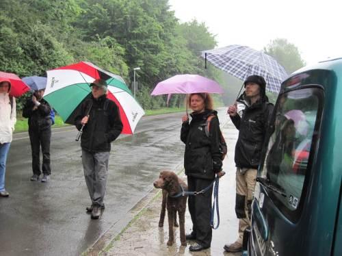 Gut beschirmt, mit Regenjacken und -hosen ausgestattet kann uns eigentlich auch bei unserem Freiluftteil nicht viel passieren.