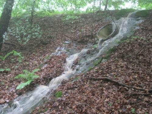 Die Natur macht, was sie will - unplanmäßig verlässt die Flut die Straße, rein in die Schlucht.