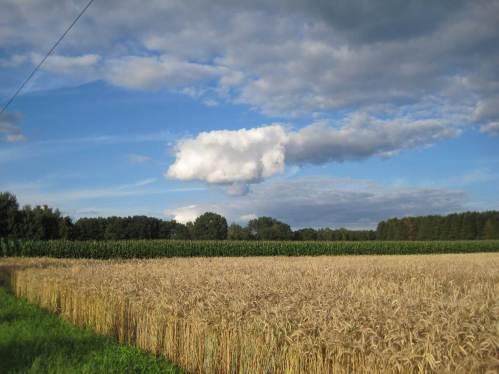Abendliche Radtour durchs Gülleland Niedersachsen.
