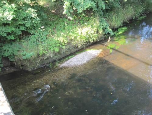 Vor einem alten Brückenfundament liegt ein halber Lkw Kies - gut zu sehen, wie die Seeve nach und nach das Material abtransportiert. Der Fluss weiss am Besten, wo die richtige Position ist.