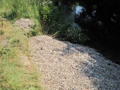 Jüngster Kies, leider in Erosionsloch des Ufers geschüttet - also wird er ins Gewässer profiliert.