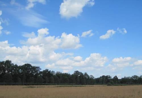 Kein Wunder - das ist mein Meerforellenwetter. - Warm, blauer Himmel, ein Bisschen Wind, weisse Wolken ziehen.