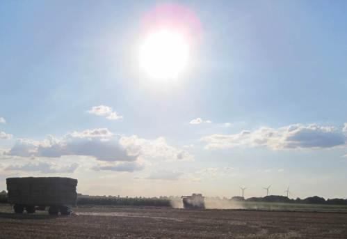 ... wird rund um die Uhr die Getreideernte fortgesetzt.