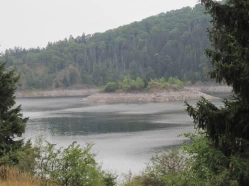 Rappbodeinsel, tiefer Wasserstand Talsperre