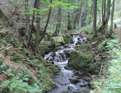 Wasserfall am Zillierbach
