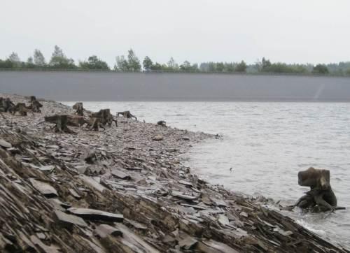 Baumstubben nahe Staudamm