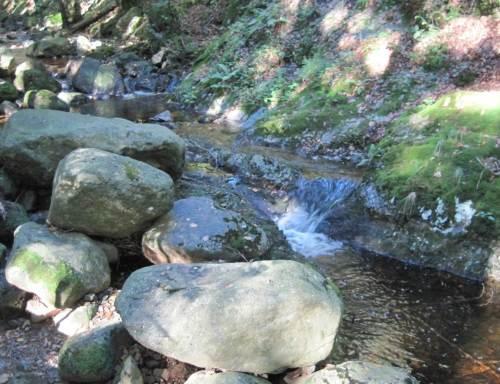 Steinerne Renne, Steinbrocken an Wasserfall