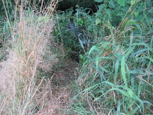 mysteriöser Ausstieg aus Seeve bei ROWA, Karoxbostel