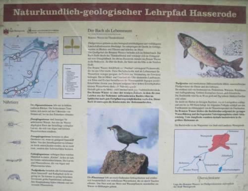 Forellenbach, Tafel Lehrpfad Hasserode