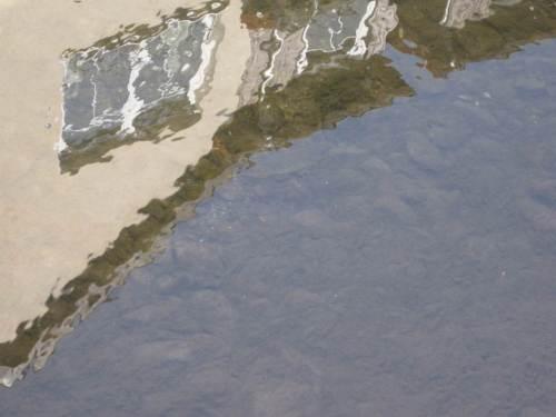 Wernigerode, Zillierbach-Spiegel - was sehen wir