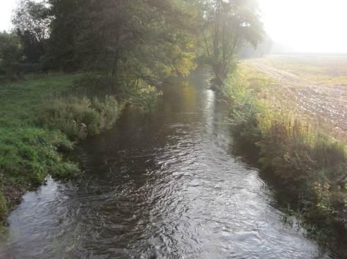 Seeve unter Hörstener Brücke, Acker bis über Kante