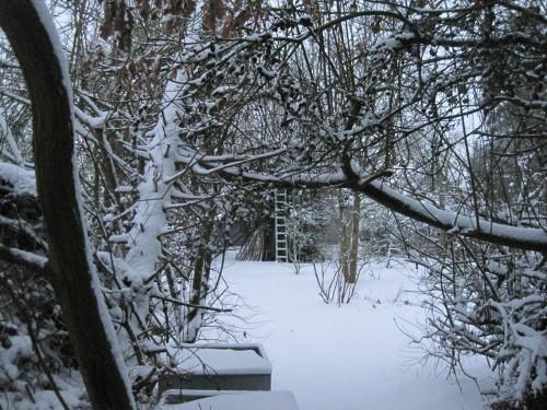 10 cm sind es wohl geworden, wie der Wilder-Garten-Aspekt zeigt. - Wie gut, dass Sonntag ist.