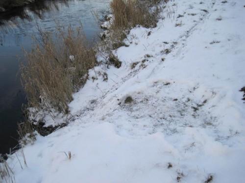 Sitzplatz, Rutsche ins Wasser, nach hinten aus dem Foto Fußspur-Autobahn - wer war das?!