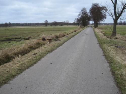 Östlich der Wiesenausfahrt jedenfalls ist der Teerweg sauber.