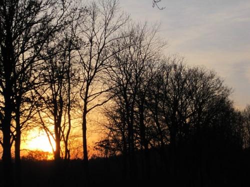 IMG_8546 - Sonnenuntergang Bendestorf