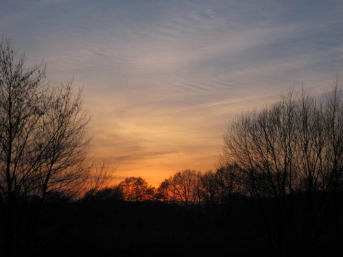 Noch immer derselbe Sonnenuntergang - nun gewesen. Ich eile zum Vortrag bei der Fischereigenossenschaft Seeve.
