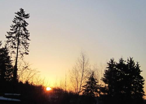 Wir hatten -11,4 Grad Celsius. Für Niedersachsen soll es die kälteste Nacht jemals im März gewesen sein.