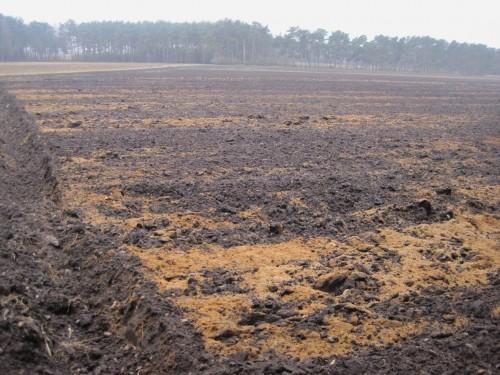 Das Gelbe zeigt diesmal: der Boden hat fertig. Der schlagkräftige Landmann hat sandig-steinige Moräne hochgepflügt.