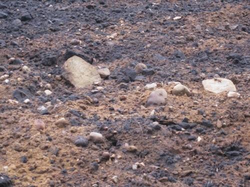 Hohe Varianz der Steingrößen - auch große Steine sind zahlreich vertreten.