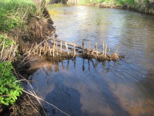 Bei genauerem Hinsehen wird die störende Verstopfung - der Sammler wirkt mehr als eine Buhne und lässt Boden erodieren statt ihn zu sammeln - deutlich erkennbar.