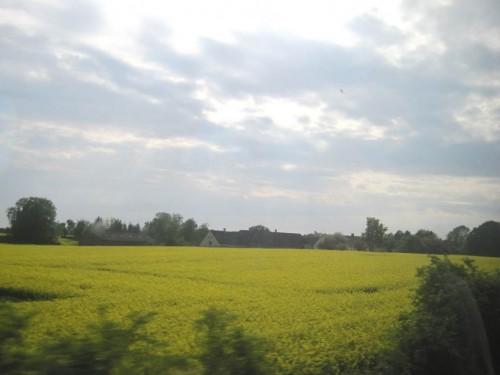 Blick nach Westen gegen die Fahrtrichtung - na also: über Fünen reisst der Himmel auf, die Sonne bescheint Intensiv-Agrarlandschaft.