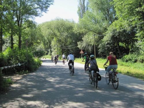 Wie schön, dass es in Hamburg noch Bäume gibt. Lichter Schatten erfreut Radler, Fußgänger, Tier- und Pflanzenwelt - und ist ein guter Beitrag zur Folgenminderung im Klimawandel.