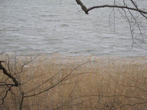 Blick von der Moränenkante auf den See - ein eiskalter Wind pfeift uns um die Ohren.
