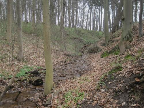 Da fließt schon der nächste Quellbach - im V-Tal durch die Moräne.