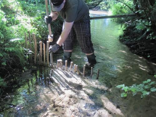 Jetzt wird die Form gegeben - bachmittig auf Mittelwasserniveau, zum Ufer ansteigend als Erosionsschutz.