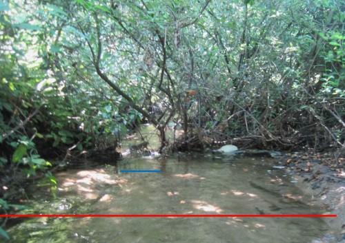 Nahebei zeigt die aktuelle Situation durch einen Sturzbaum, wie gering die dynamische Niedrigwassersituation aussehen kann (blau) - rot: die Sandwüste.